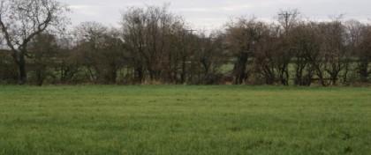 Hall Lane, Great Eccleston, Preston, Lancashire, PR3 0XN