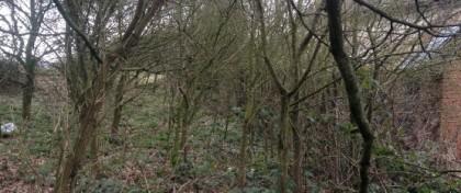 Wardens Cottage The Down Bridgnorth Shropshire WV16 6UB