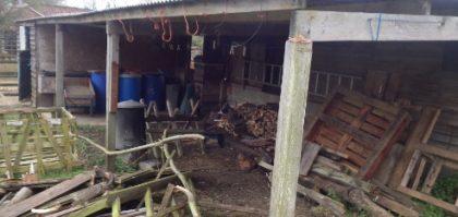 Threshing Yard Barn Hallfield Road IP24 1PT